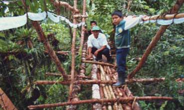 Pasarela de troncos sobre el rio Jirote