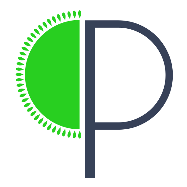 Promundi Logo